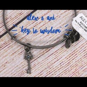 Alex & Ani key bangle